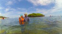 snorkeling sadranan